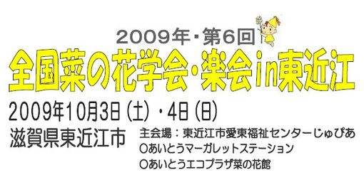 WS002801.JPG.jpeg