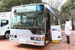 IMG_3878bc.JPG